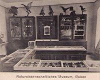 naturw-Museum